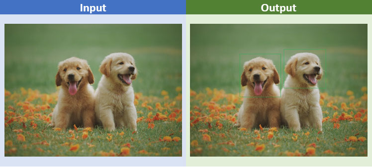 Image/Object localization